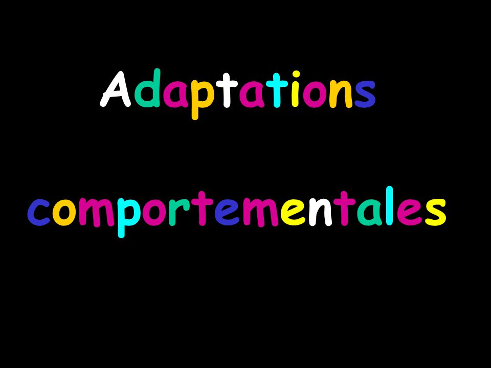 AdaptationscomportementalesAdaptationscomportementales