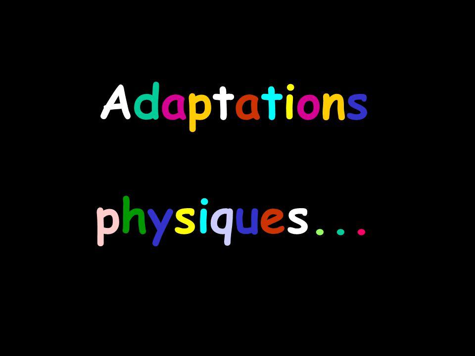 Adaptationsphysiques...Adaptationsphysiques...