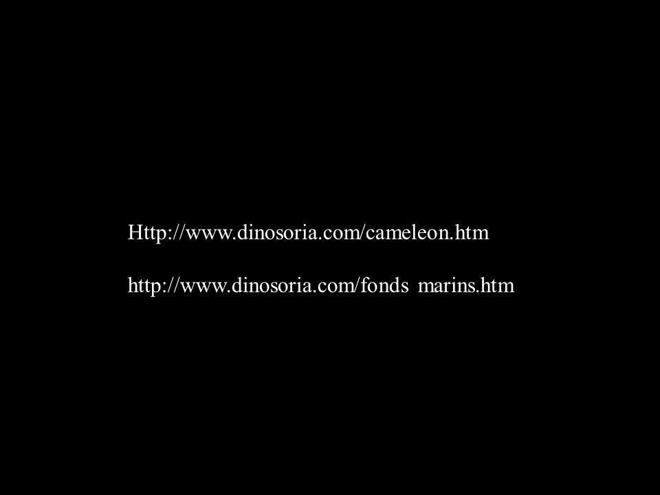Http://www.dinosoria.com/cameleon.htm http://www.dinosoria.com/fonds marins.htm