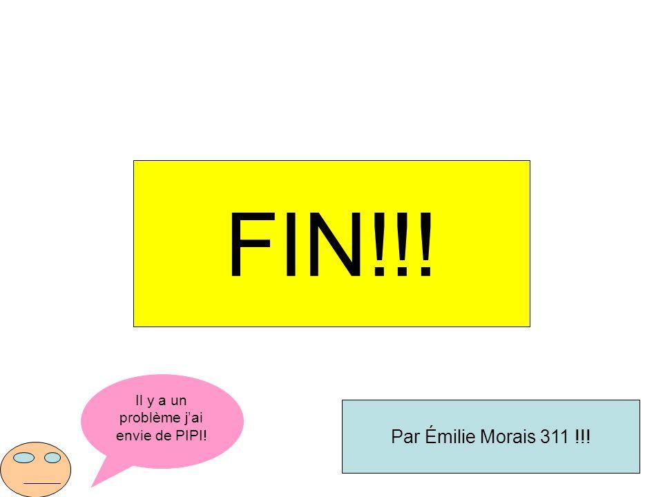 Il y a un problème jai envie de PIPI! FIN!!! Par Émilie Morais 311 !!!