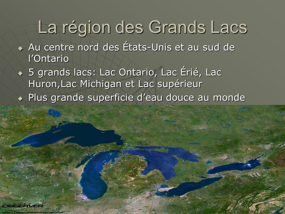 La région des Grands Lacs Au centre nord des États-Unis et au sud de lOntario Au centre nord des États-Unis et au sud de lOntario 5 grands lacs: Lac Ontario, Lac Érié, Lac Huron,Lac Michigan et Lac supérieur 5 grands lacs: Lac Ontario, Lac Érié, Lac Huron,Lac Michigan et Lac supérieur Plus grande superficie deau douce au monde Plus grande superficie deau douce au monde