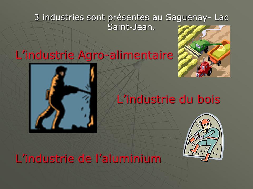 3 industries sont présentes au Saguenay- Lac Saint-Jean. Lindustrie Agro-alimentaire Lindustrie du bois Lindustrie de laluminium