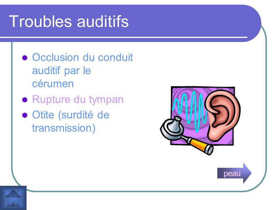 Fonction déquilibre de loreille http://www.solvaypharma.ca/fr/areas/earnoseandthroat.asp Le vestibule et les canaux-semicirculaire constituent lorgane de léquilibre.
