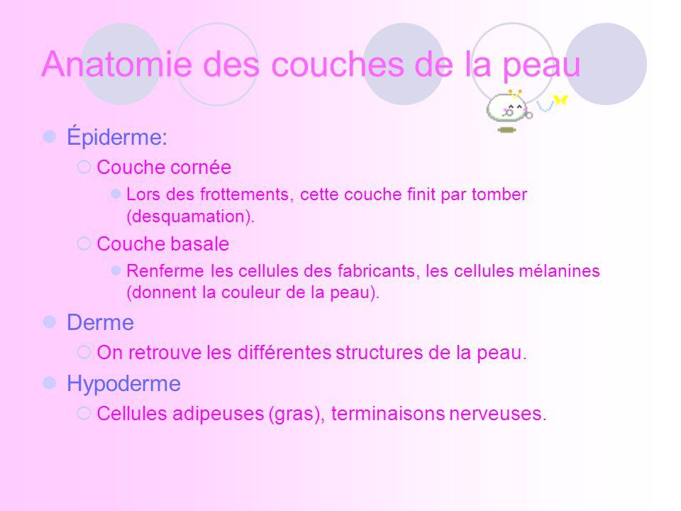 http://www.esthetique.qc.ca/services_fr/peau/schema_peau.html