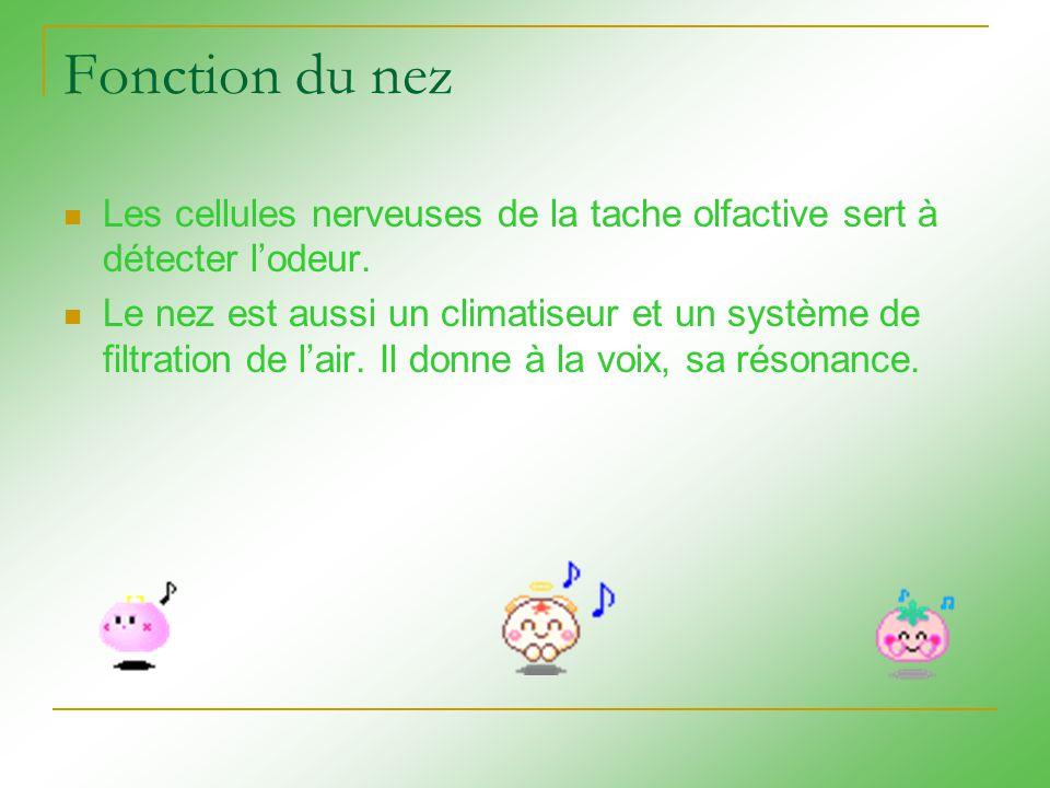 http://www.doctissimo.fr/html/santé/mag_2001/mag0525/sa_4070_rhinite_nez.htm