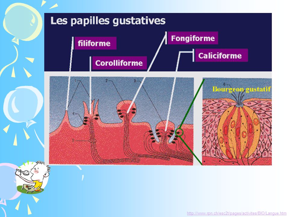 http ://www.10parjour.net/enfants/fiche_oct/fiche_oct-a.asp