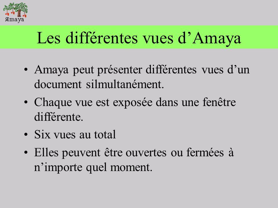 Vérifier lorthographe Par défault, le dictionnaire personnel de lutilisateur est AmayaHome/dictionary.DCT Le correcteur sera utilisé en supplément du dictionnaire spécifique de la langue.