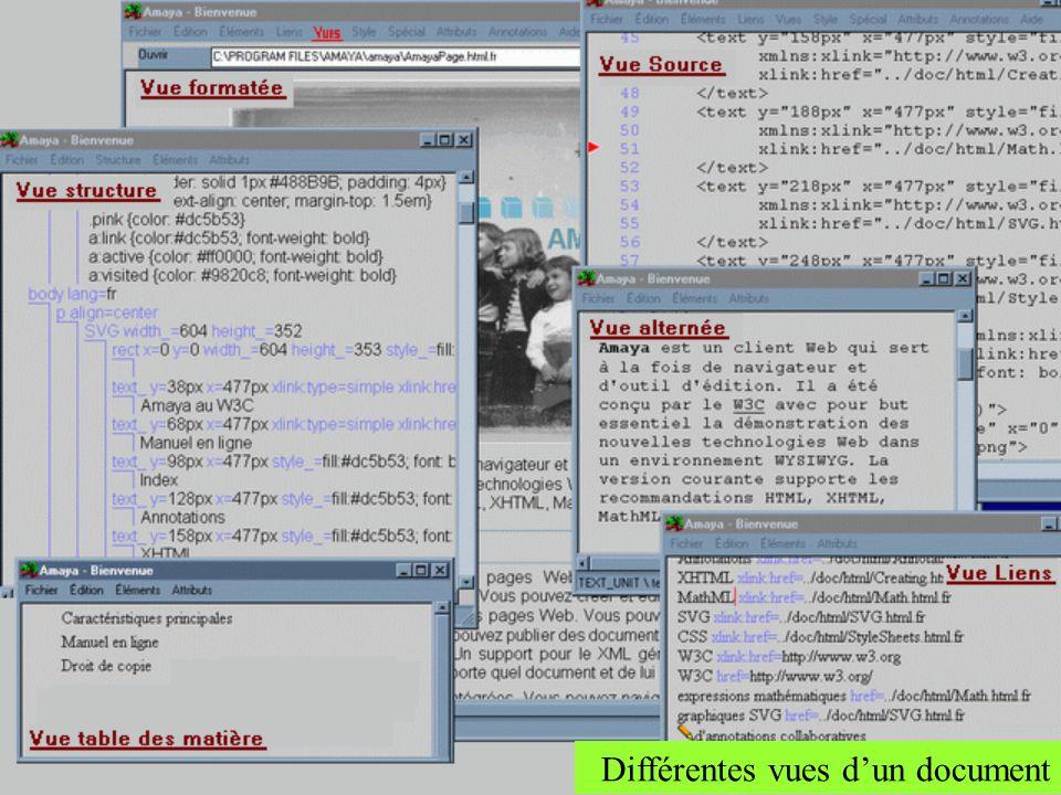 Amaya peut présenter différentes vues dun document silmultanément. Chaque vue est exposée dans une fenêtre différente. Six vues au total Elles peuvent