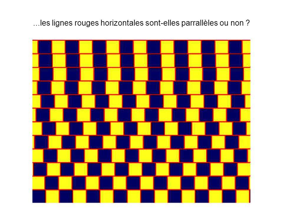 ...les lignes rouges horizontales sont-elles parrallèles ou non ?