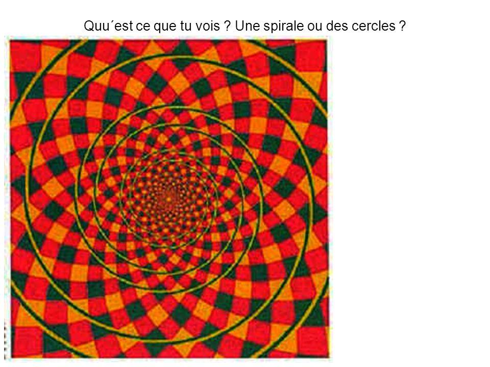 Quu´est ce que tu vois ? Une spirale ou des cercles ?