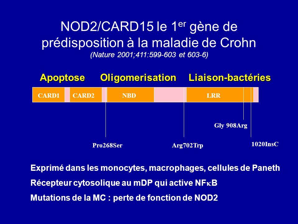 CARD1CARD2NBDLRR Pro268SerArg702Trp Gly 908Arg 1020InsC NOD2/CARD15 le 1 er gène de prédisposition à la maladie de Crohn (Nature 2001;411:599-603 et 6