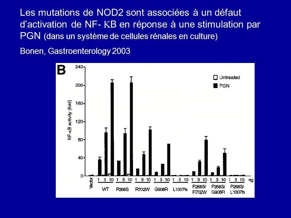 Les mutations de NOD2 sont associées à un défaut dactivation de NF- B en réponse à une stimulation par PGN (dans un système de cellules rénales en cul