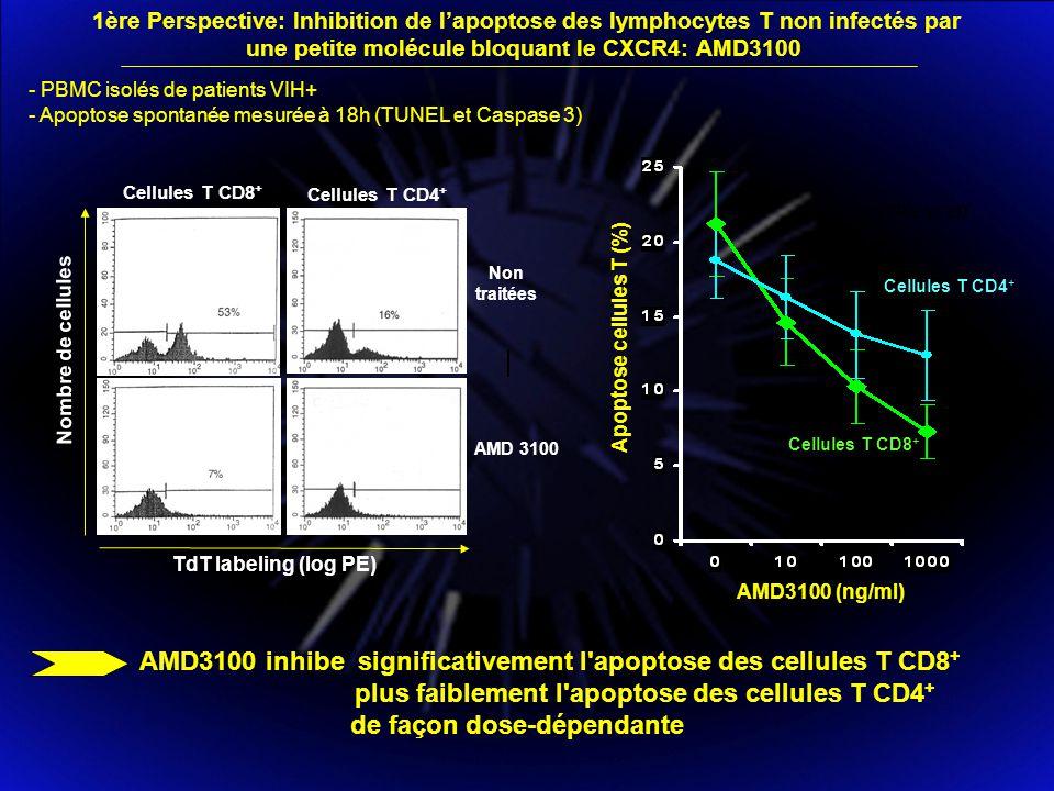 AMD 3100 Cellules T CD8 + Cellules T CD4 + Nombre de cellules TdT labeling (log PE) Non traitées 6% - PBMC isolés de patients VIH+ - Apoptose spontanée mesurée à 18h (TUNEL et Caspase 3) UNTREATED Cellules T CD4 + Cellules T CD8 + Apoptose cellules T (%) AMD3100 (ng/ml) AMD3100 inhibe significativement l apoptose des cellules T CD8 + plus faiblement l apoptose des cellules T CD4 + de façon dose-dépendante 1ère Perspective: Inhibition de lapoptose des lymphocytes T non infectés par une petite molécule bloquant le CXCR4: AMD3100