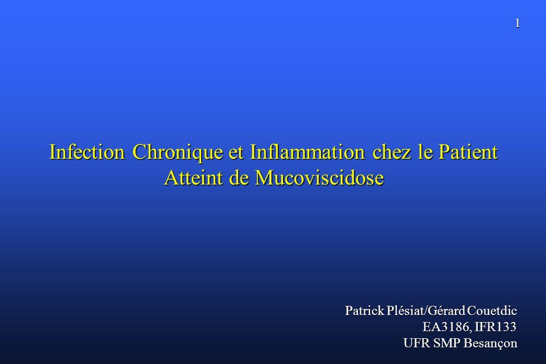 1 Infection Chronique et Inflammation chez le Patient Atteint de Mucoviscidose Patrick Plésiat/Gérard Couetdic EA3186, IFR133 UFR SMP Besançon