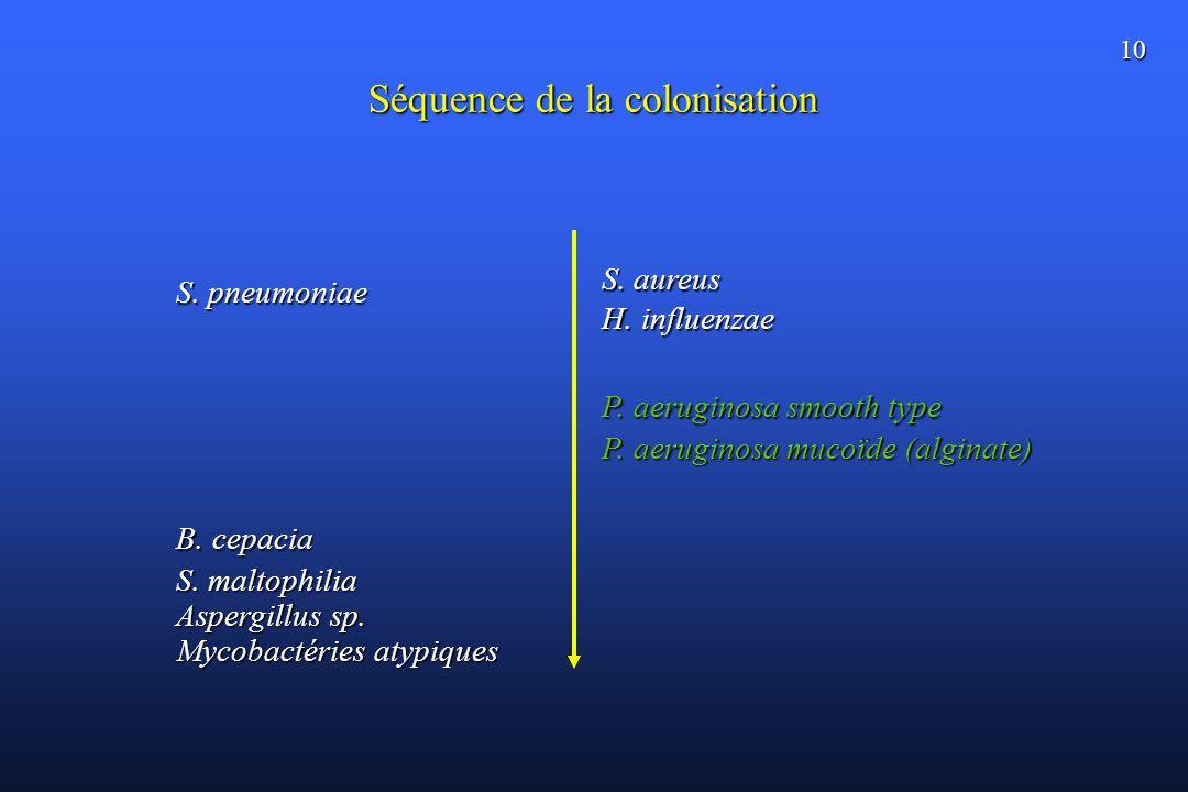 10 Séquence de la colonisation S. aureus H. influenzae P. aeruginosa smooth type P. aeruginosa mucoïde (alginate) B. cepacia S. maltophilia S. pneumon
