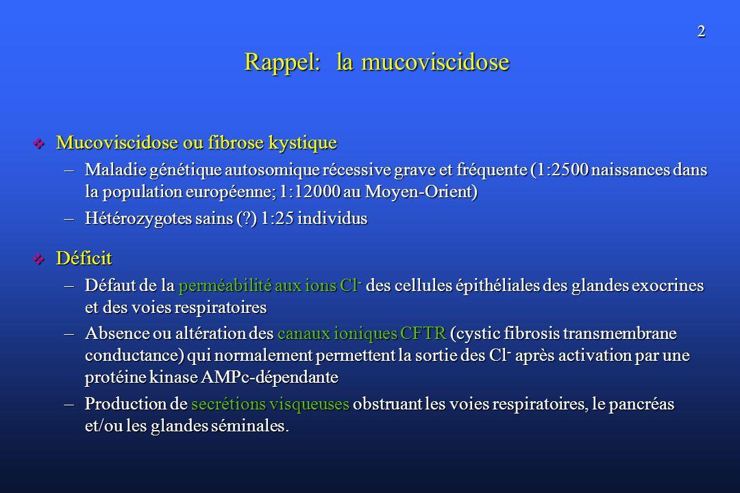 2 Rappel: la mucoviscidose Mucoviscidose ou fibrose kystique Mucoviscidose ou fibrose kystique –Maladie génétique autosomique récessive grave et fréquente (1:2500 naissances dans la population européenne; 1:12000 au Moyen-Orient) –Hétérozygotes sains (?) 1:25 individus Déficit Déficit –Défaut de la perméabilité aux ions Cl - des cellules épithéliales des glandes exocrines et des voies respiratoires –Absence ou altération des canaux ioniques CFTR (cystic fibrosis transmembrane conductance) qui normalement permettent la sortie des Cl - après activation par une protéine kinase AMPc-dépendante –Production de secrétions visqueuses obstruant les voies respiratoires, le pancréas et/ou les glandes séminales.