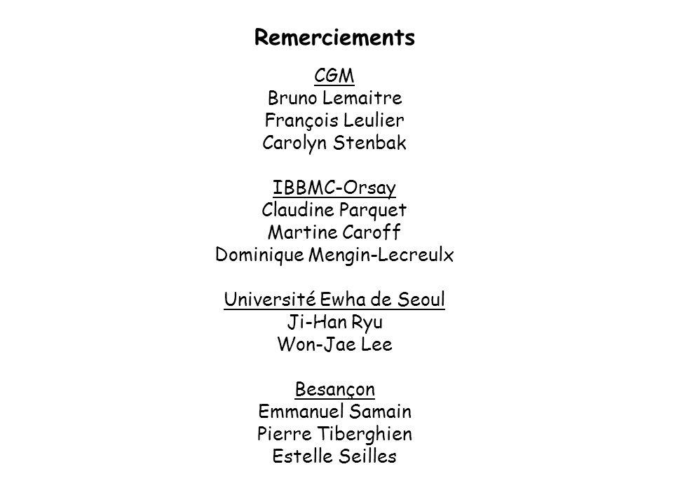 CGM Bruno Lemaitre François Leulier Carolyn Stenbak IBBMC-Orsay Claudine Parquet Martine Caroff Dominique Mengin-Lecreulx Université Ewha de Seoul Ji-