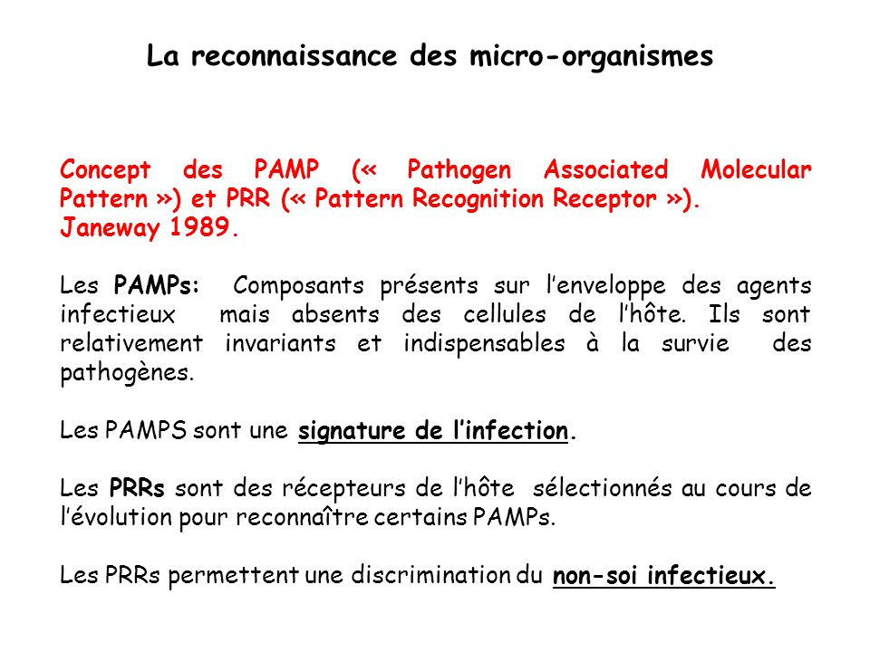 Concept des PAMP (« Pathogen Associated Molecular Pattern ») et PRR (« Pattern Recognition Receptor »).