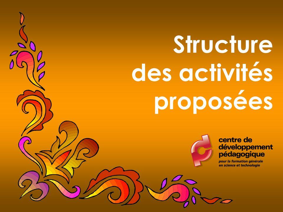 Structure des activités proposées