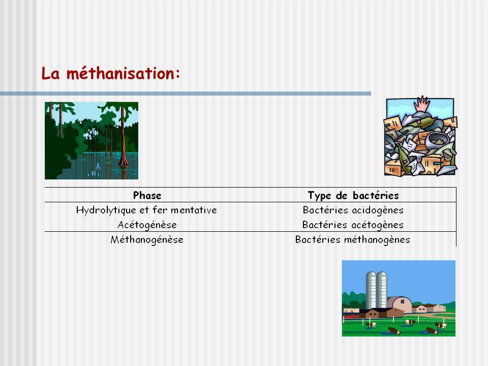 Regard sur la SAÉ (suite) Activités dapprentissage Réactions exothermiques et endothermiques Effet de serre, empreinte écologique Capacité thermique massique Nomenclature, équations chimiques et stæchiométrie Établir un plan Lélève problématise Lenseignant balise le questionnement et précise les critères dévaluation