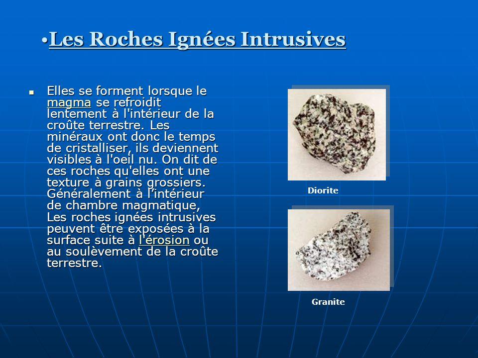 Elles se forment lorsque le magma se refroidit lentement à l'intérieur de la croûte terrestre. Les minéraux ont donc le temps de cristalliser, ils dev