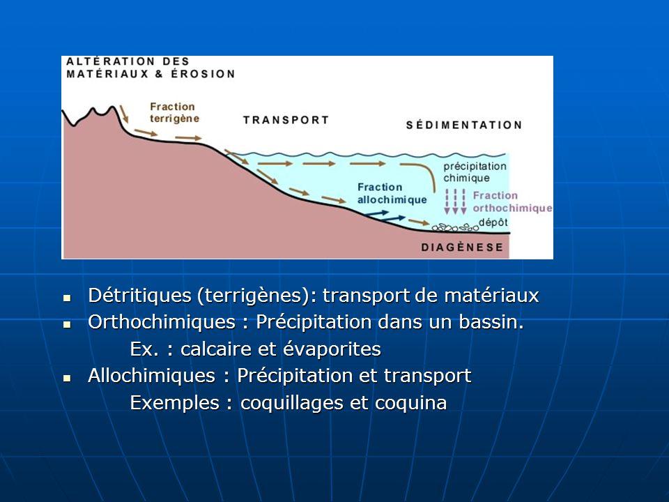 Détritiques (terrigènes): transport de matériaux Détritiques (terrigènes): transport de matériaux Orthochimiques : Précipitation dans un bassin. Ortho