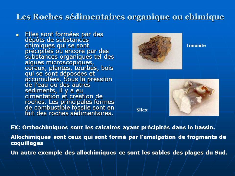 Elles sont formées par des dépôts de substances chimiques qui se sont précipités ou encore par des substances organiques tel des algues microscopiques