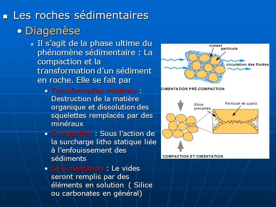 Les roches sédimentaires Les roches sédimentaires DiagenèseDiagenèse Il sagit de la phase ultime du phénomène sédimentaire : La compaction et la trans