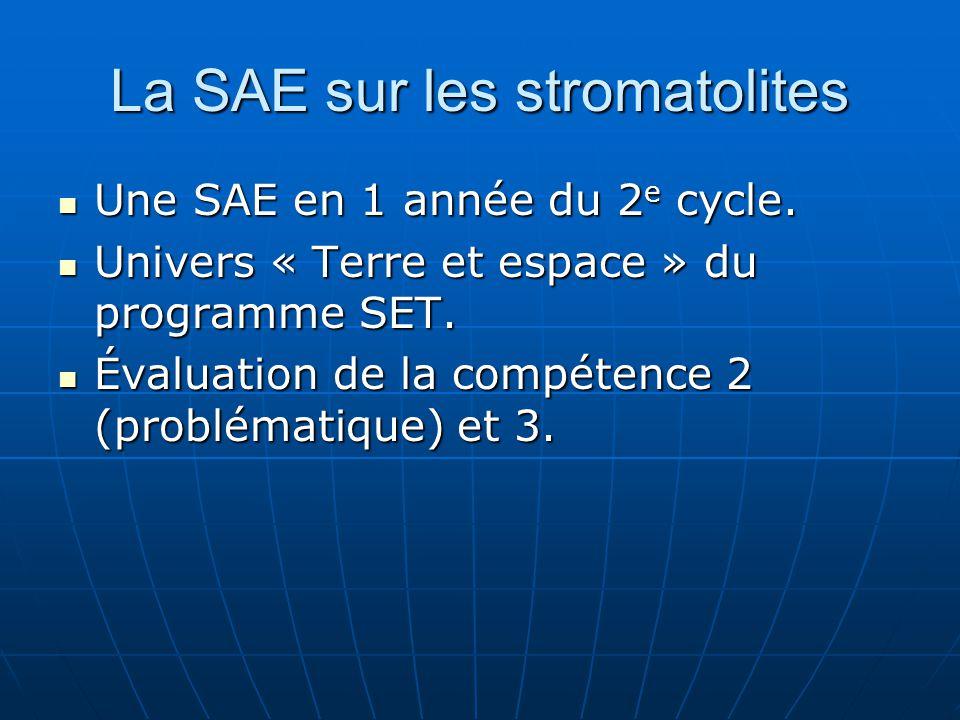 La SAE sur les stromatolites Une SAE en 1 année du 2 e cycle. Une SAE en 1 année du 2 e cycle. Univers « Terre et espace » du programme SET. Univers «