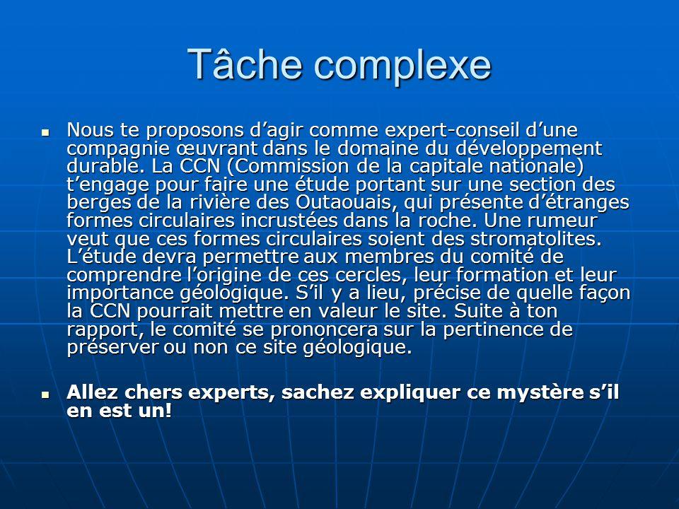 Tâche complexe Nous te proposons dagir comme expert-conseil dune compagnie œuvrant dans le domaine du développement durable. La CCN (Commission de la