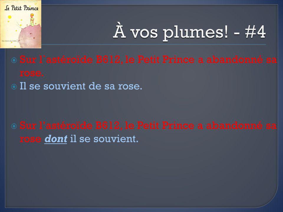 Sur l`astéroïde B612, le Petit Prince a abandonné sa rose.