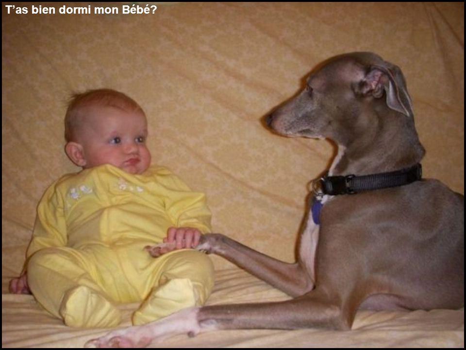 Tas bien dormi mon Bébé?