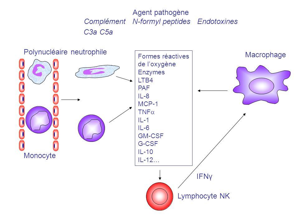 Agent pathogène Complément N-formyl peptides Endotoxines C3a C5a Formes réactives de loxygène Enzymes LTB4 PAF IL-8 MCP-1 TNF IL-1 IL-6 GM-CSF G-CSF I