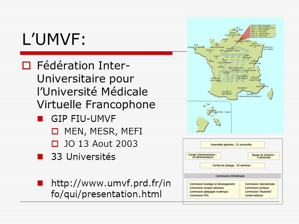 LUMVF: Fédération Inter- Universitaire pour lUniversité Médicale Virtuelle Francophone GIP FIU-UMVF MEN, MESR, MEFI JO 13 Aout 2003 33 Universités htt