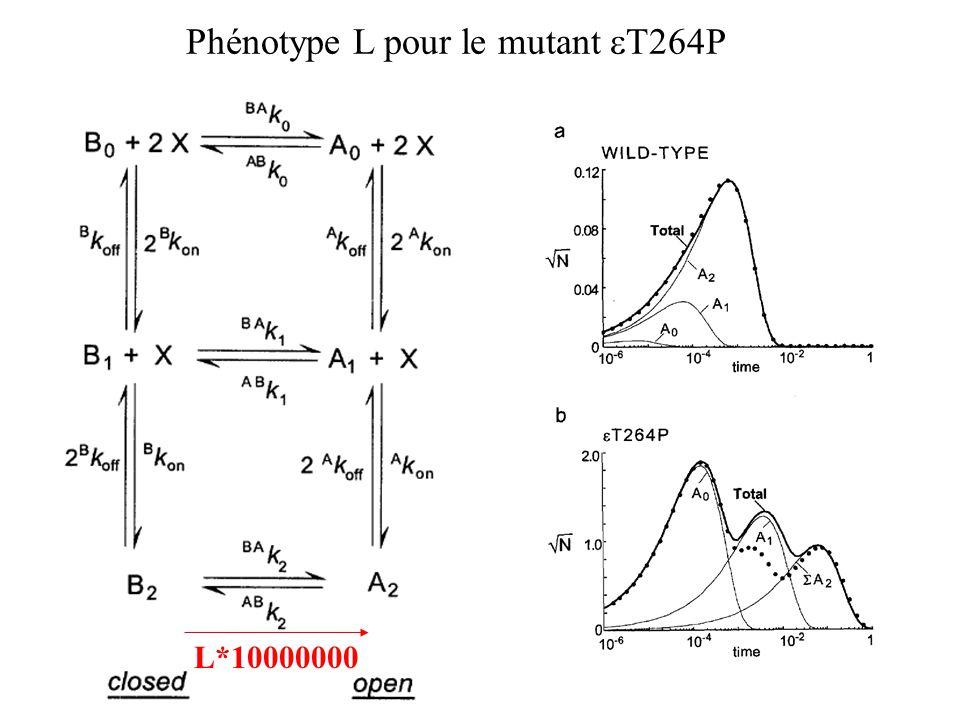 Phénotype L pour le mutant T264P L*10000000
