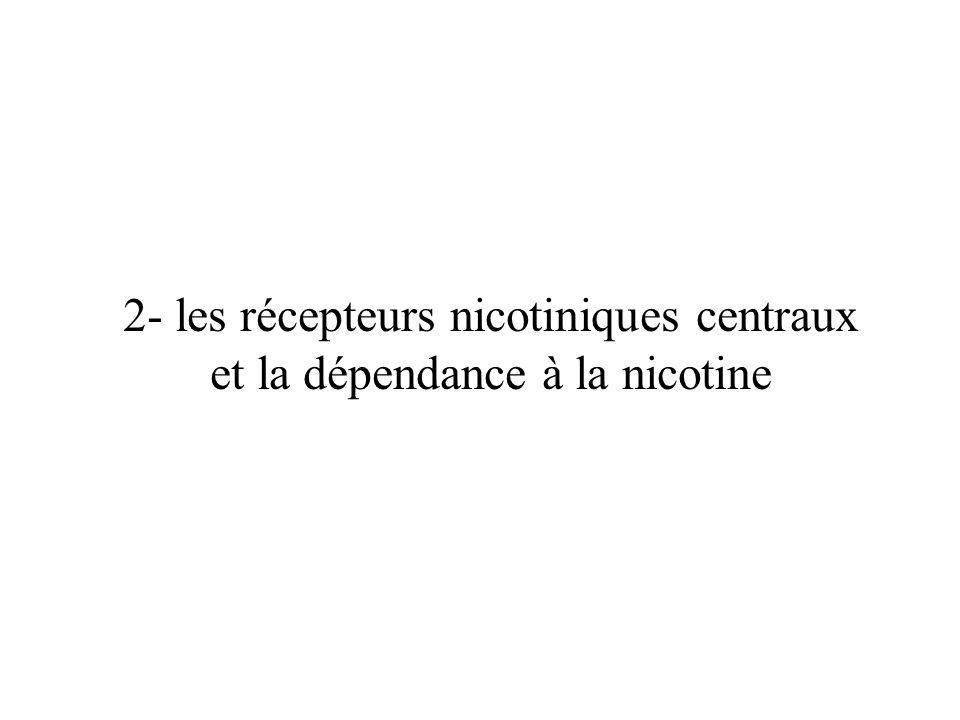 2- les récepteurs nicotiniques centraux et la dépendance à la nicotine