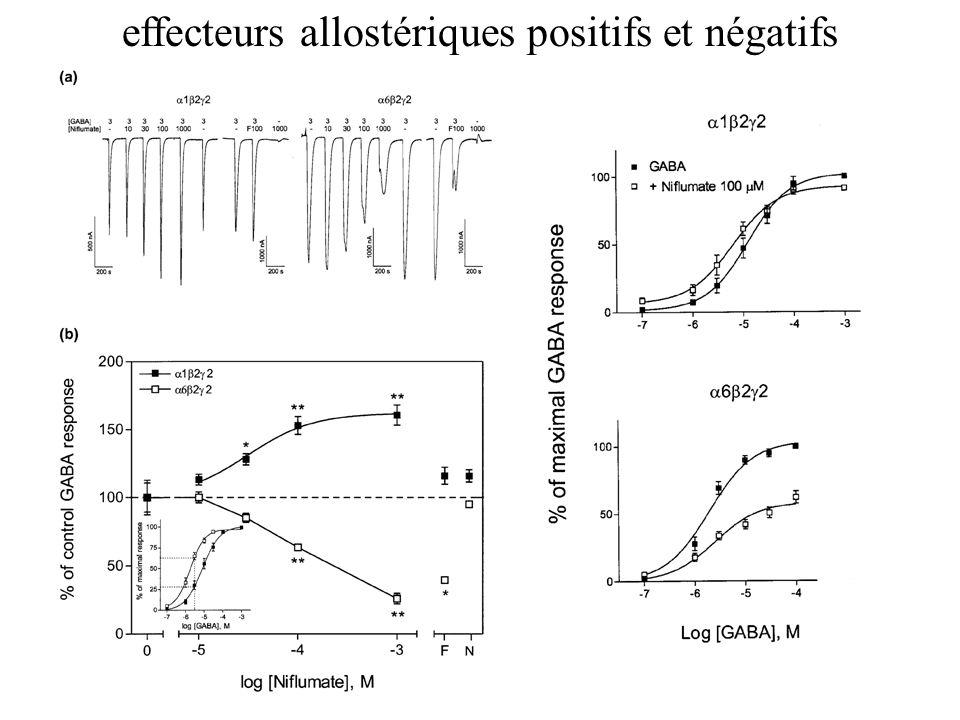 effecteurs allostériques positifs et négatifs