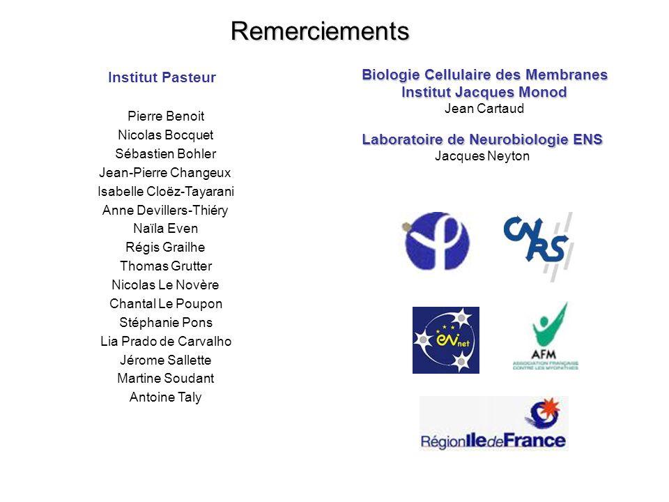 Institut Pasteur Pierre Benoit Nicolas Bocquet Sébastien Bohler Jean-Pierre Changeux Isabelle Cloëz-Tayarani Anne Devillers-Thiéry Naïla Even Régis Gr
