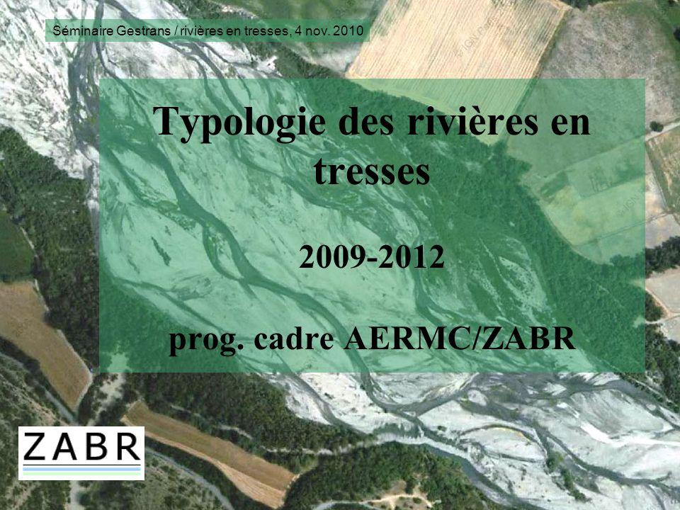 Typologie des rivières en tresses 2009-2012 prog. cadre AERMC/ZABR Séminaire Gestrans / rivières en tresses, 4 nov. 2010