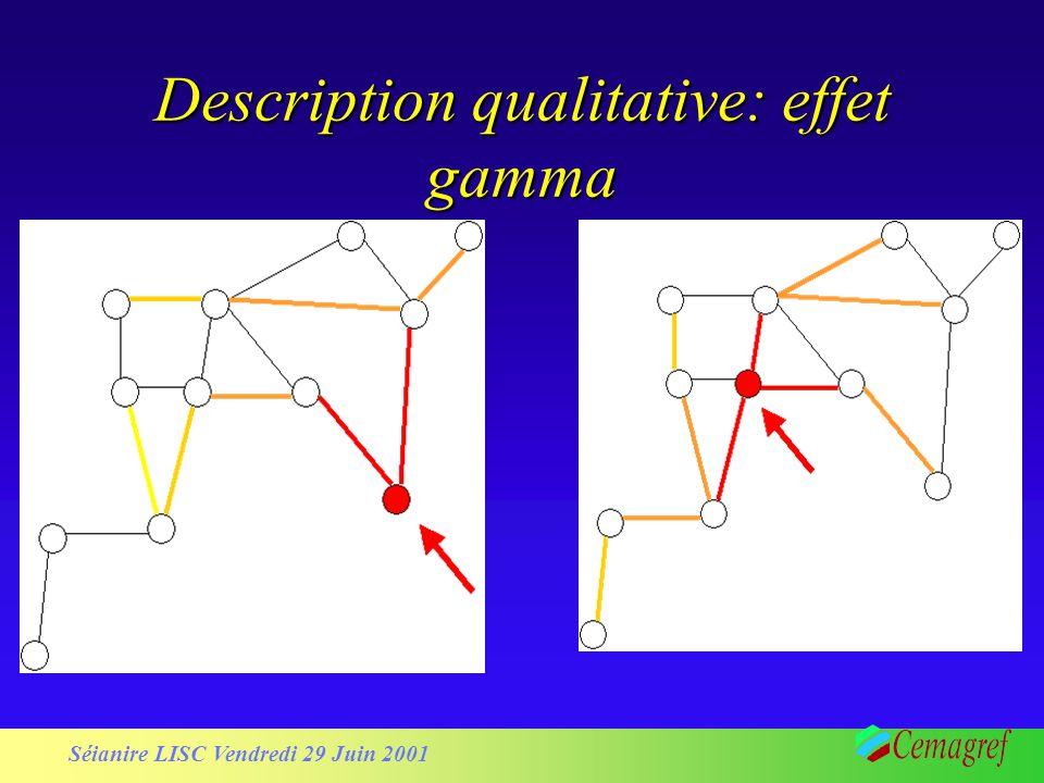 Séianire LISC Vendredi 29 Juin 2001 Description qualitative: effet gamma