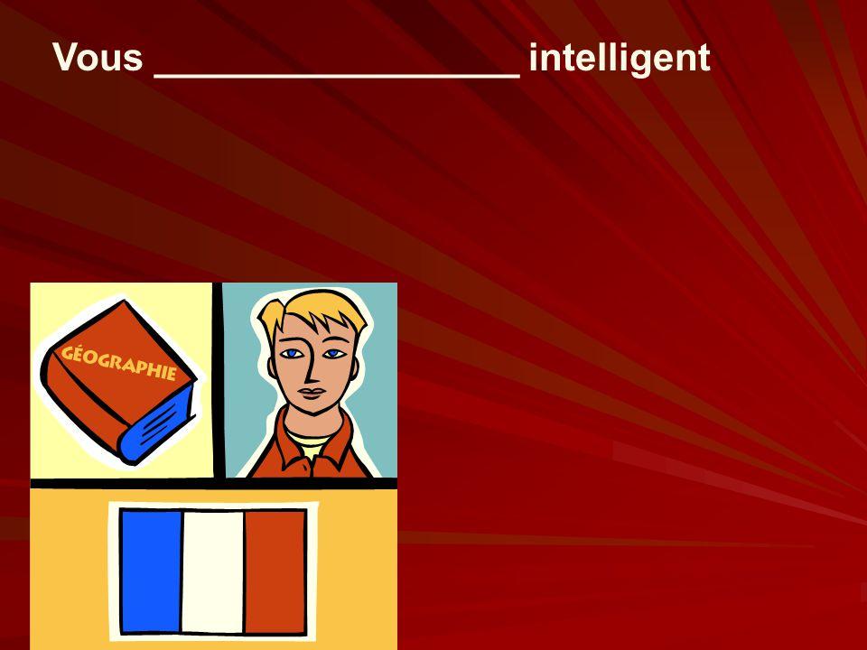 Vous _________________ intelligent