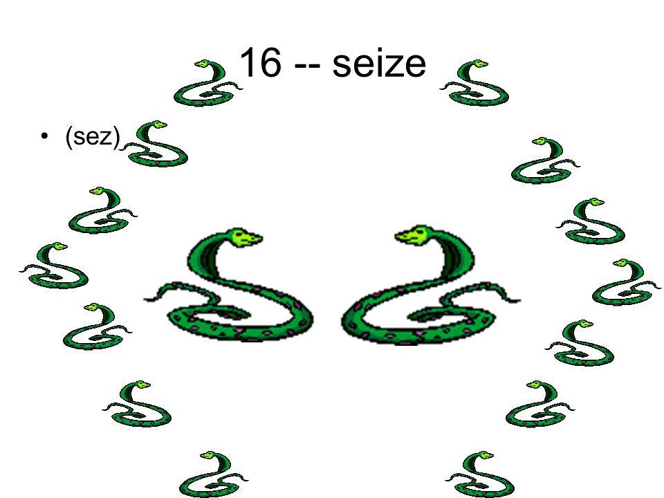 16 -- seize (sez)