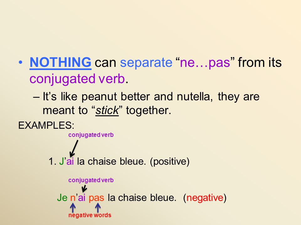 NOTHING can separate ne…pas from its conjugated verb.