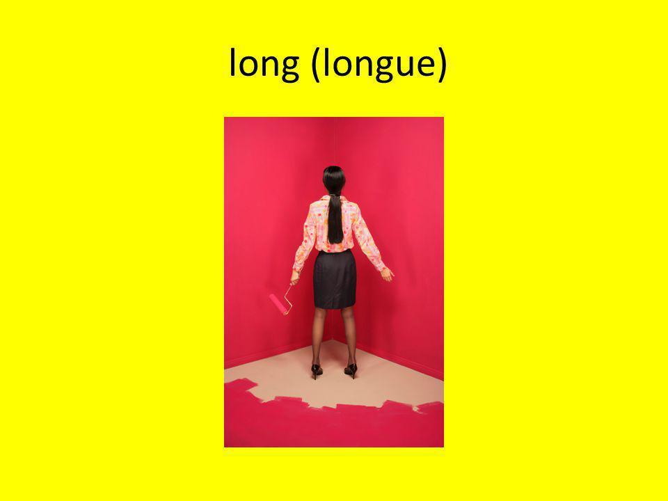 long (longue)