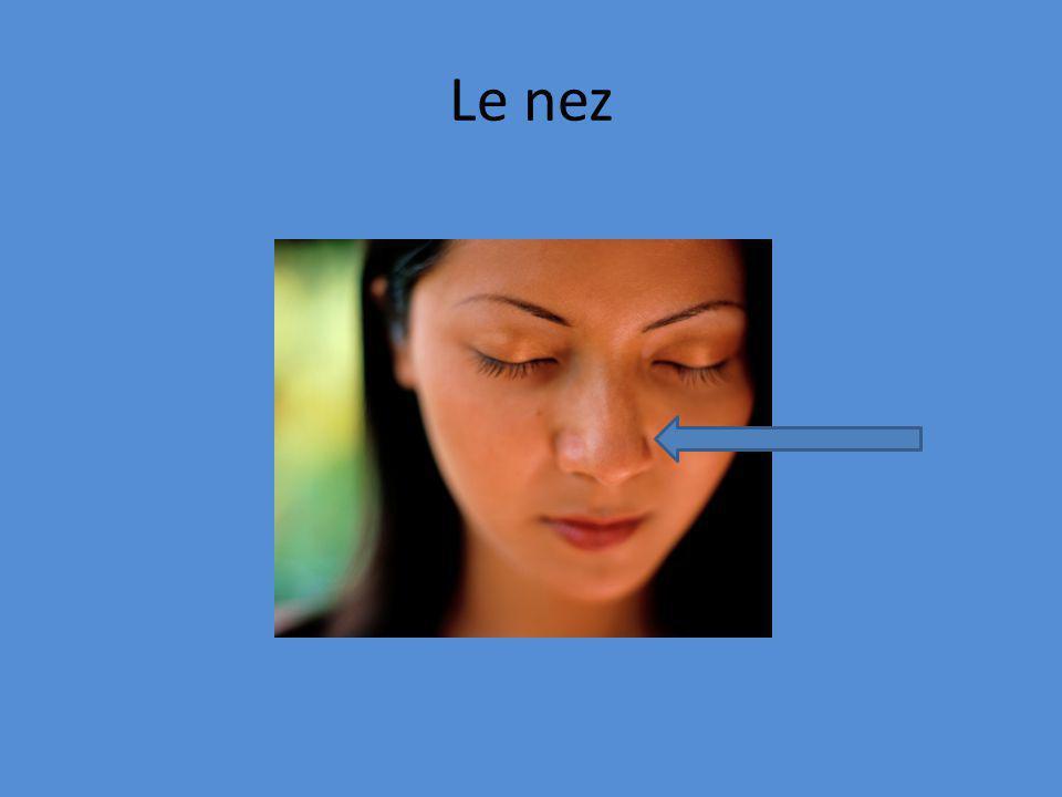 Le nez