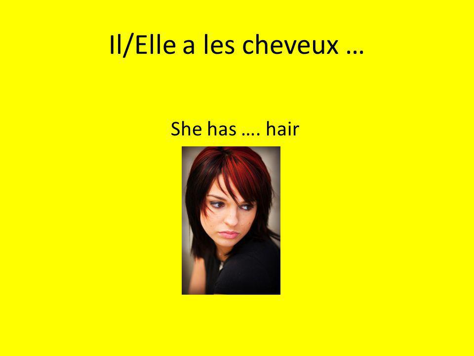 Il/Elle a les cheveux … She has …. hair