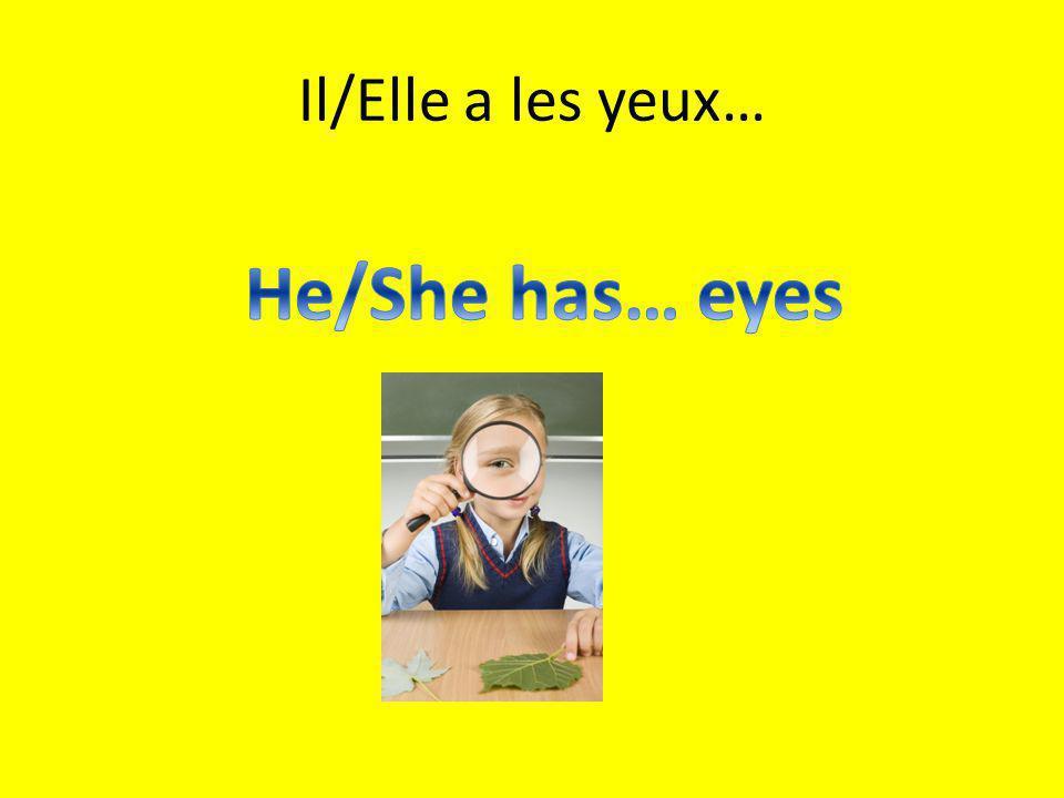 Il/Elle a les yeux…