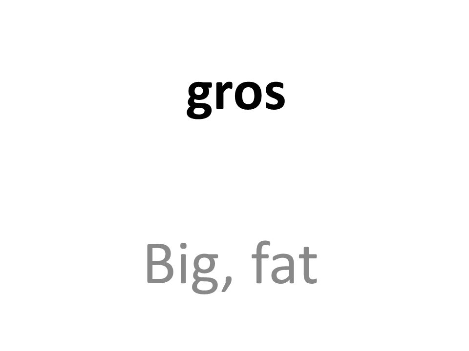 gros Big, fat