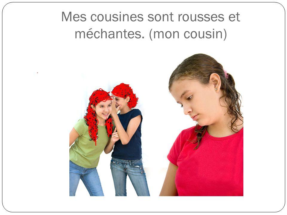 Mes cousines sont rousses et méchantes. (mon cousin)