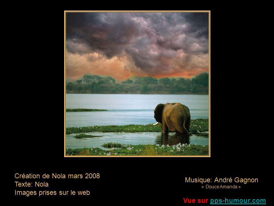 Léléphant Les sentes rouge dAfrique Tout au long des millénaires Ont tant vu passer les tiens, Quelles saignent à présent Sous tes pas de pachyderme A la veille de disparaître.
